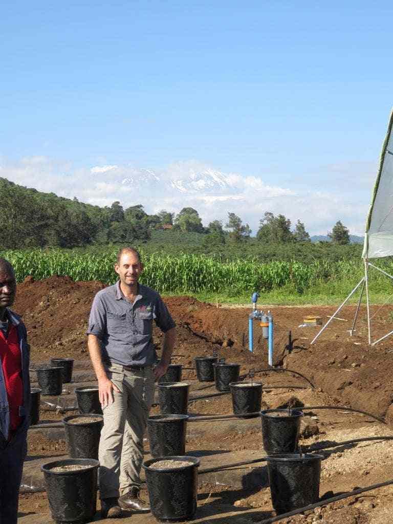 Africado, Tanzanië – Installering van 'n bloubessie-proefblok