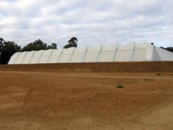 Greenhouse project Lebombo Wellington - 2